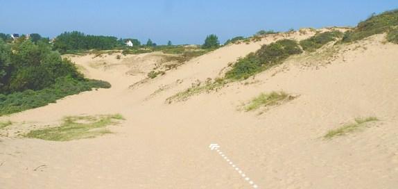 pad door duinen